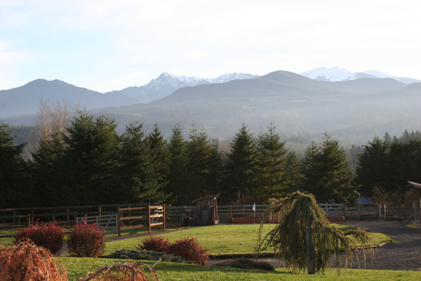 Sequim Mountain View